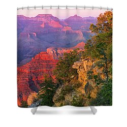 Canyon Allure Shower Curtain by Mikes Nature