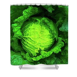 Cabbage 02 Shower Curtain by Wally Hampton