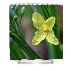 Cabbage Blossom Shower Curtain