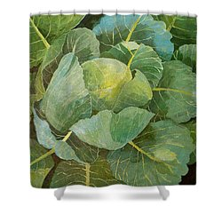 Cabbage Shower Curtain by Jennifer Abbot
