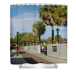 Cabbage Palms Along Hypolita Street Shower Curtain
