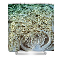 Cabbage Universe Shower Curtain by Laurie Paci