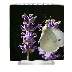 Shower Curtain featuring the photograph Cabbage White Butterfly On Lavender by Inge Riis McDonald