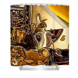 Cabinet Top Shower Curtain by Ron Bissett