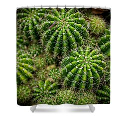 Shower Curtain featuring the photograph Cacti by Keith Hawley