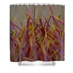 Shower Curtain featuring the photograph Cacti by Rod Wiens