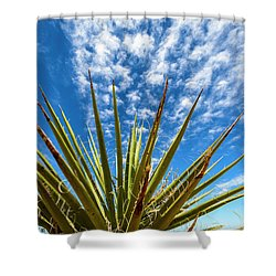 Cactus And Blue Sky Shower Curtain by Amyn Nasser