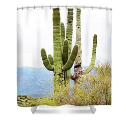 Cactus Shower Curtain by Angi Parks