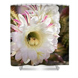Cactus Bloom 2 Shower Curtain