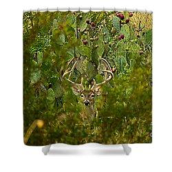 Cactus Buck Shower Curtain