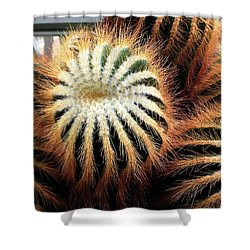 Cactus Shower Curtain by Diane Lent