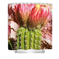 Cactus Flowe Bee Shower Curtain