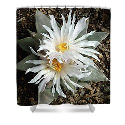 Cactus Flower 7 Shower Curtain