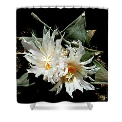 Cactus Flower 9 2 Shower Curtain