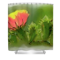 Cactus Flower On A Cactus Plant Ap Shower Curtain by Dan Carmichael