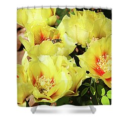 Shower Curtain featuring the photograph Cactus Flowers And Friend by Sheila Brown