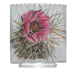 Cactus Joy Shower Curtain