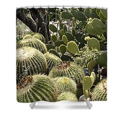 Cactus Life In Arizona Shower Curtain