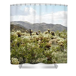 Cactus Paradise Shower Curtain by Amyn Nasser