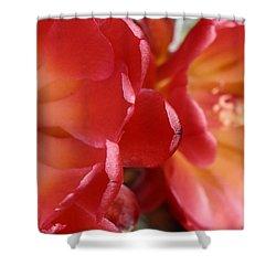 Cactus Reds Shower Curtain