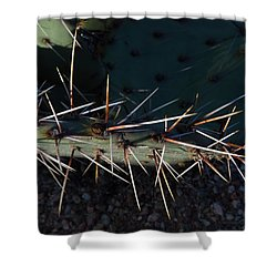 Cactus San Tan 10 Shower Curtain by Carolina Liechtenstein