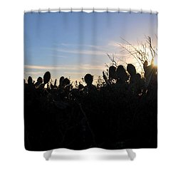 Shower Curtain featuring the photograph Cactus Silhouettes by Matt Harang