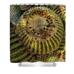 Cactus Sphere Shower Curtain