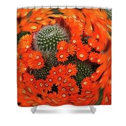 Cactus Swirl Shower Curtain