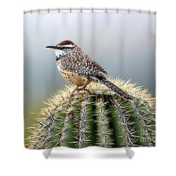 Cactus Wren On Saguaro Shower Curtain
