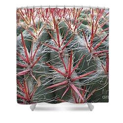 Cactus01 Shower Curtain