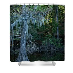 Caddo Lake #1 Shower Curtain
