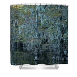 Caddo Lake #3 Shower Curtain