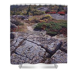 Cadillac Mountain Shower Curtain