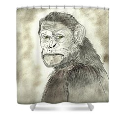 Caesar Shower Curtain by Nicole Burrell