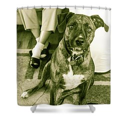 Caeser 6 Shower Curtain by Robin Coaker