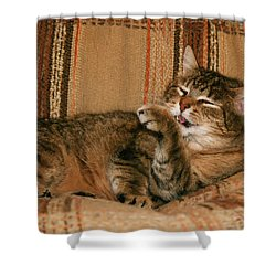 Cal-5 Shower Curtain