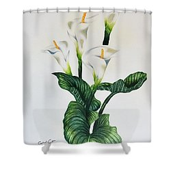 Cala Shower Curtain