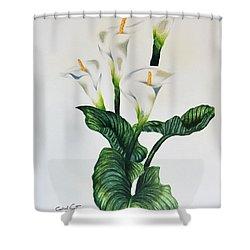 Cala Shower Curtain