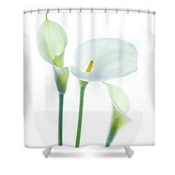 Cala Trio Shower Curtain by Rebecca Cozart