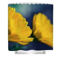 Shower Curtain featuring the photograph Calendula Flowers by Sharon Mau