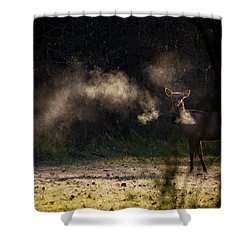 Shower Curtain featuring the photograph Calf Elk In December by Michael Dougherty