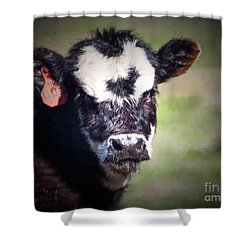 Calf Number 444 Shower Curtain