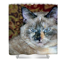 Shower Curtain featuring the photograph Cali-mese by Betty Northcutt