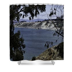 Cali Shore Shower Curtain by Judy Wolinsky