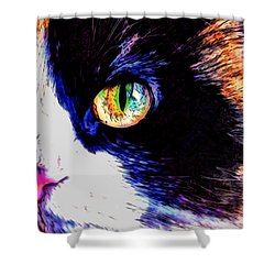 Calico Cat Shower Curtain by Kathy Kelly