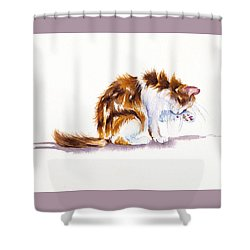 Calico Cat Washing Shower Curtain