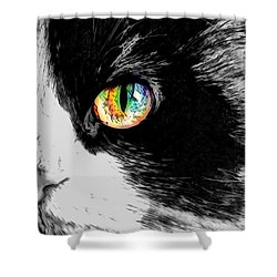 Calico Cat With A Splash Shower Curtain by Kathy Kelly