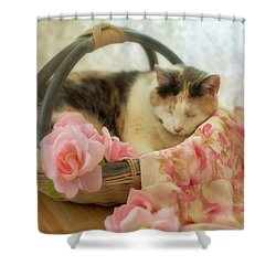Calico Kitty In A Basket With Pink Roses Shower Curtain