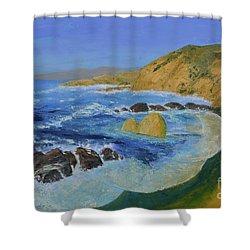 Calif. Coast Shower Curtain