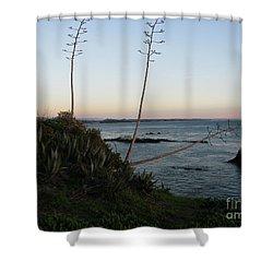 California At Twilight Shower Curtain by Mini Arora